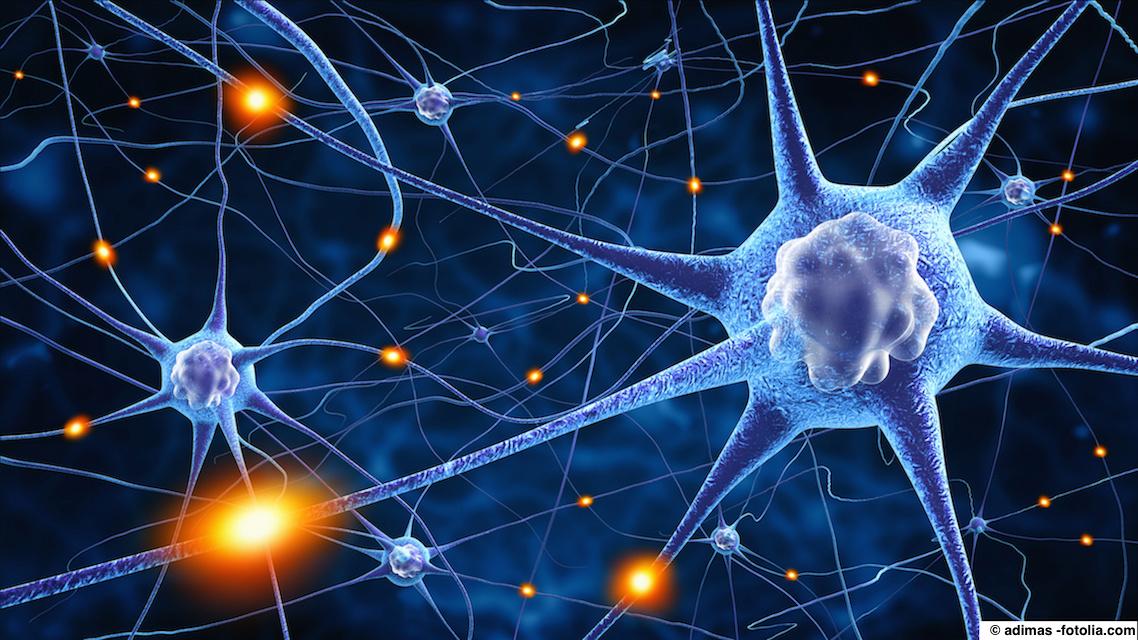 ALS: Die amyotrophe Lateralsklerose