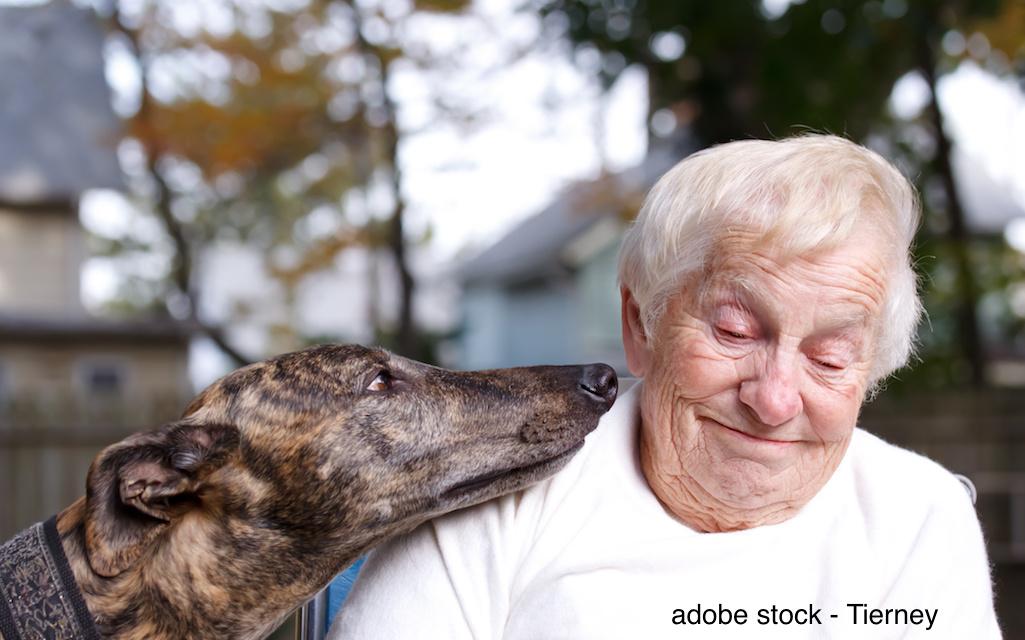 Heimtiere in der Altenpflege